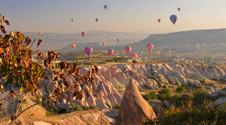 thanksgiving destinations for families